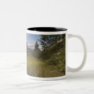 Waterfowl lake along the Icefields parkway, Two-Tone Coffee Mug