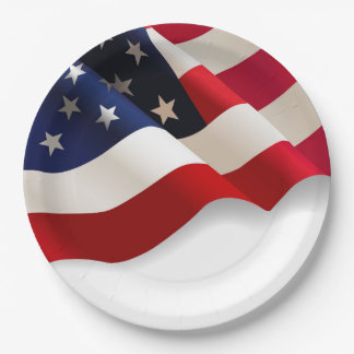 """Waving American Flag 9"""" Party Paper Plates"""