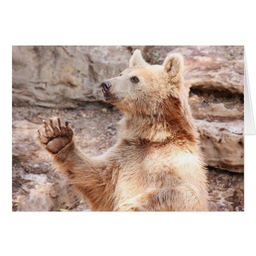 Waving Bear Greeting Card Hello