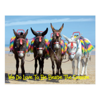 We Do Love To Be Beside The Seaside Donkey Rides Postcard