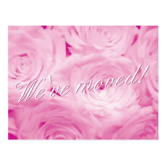We have moved postcards with pink rose flowers