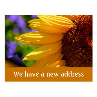 We have moved with sunflower New address Postcard
