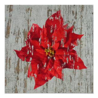 Weathered Poinsettia Winter / Christmas Wedding 13 Cm X 13 Cm Square Invitation Card