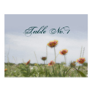 Wedding Table Number Indian Blanket Post Card
