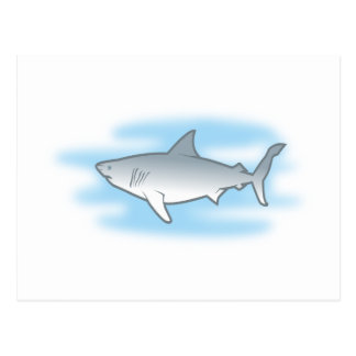 weisser Hai white shark Postkarte