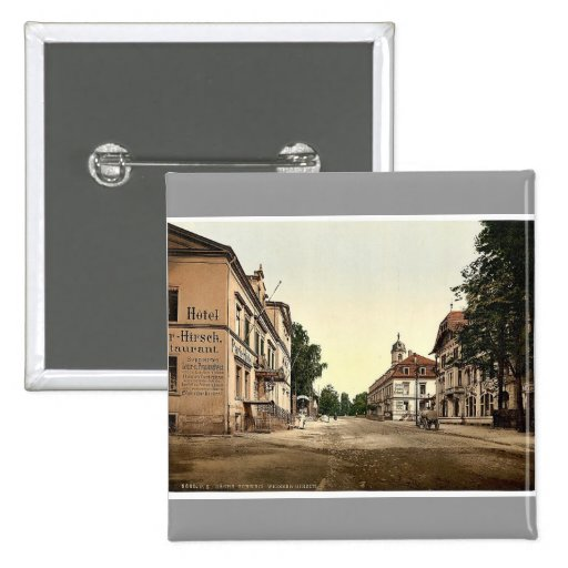 Weisser Hirsch, Saxony, Germany rare Photochrom Pin