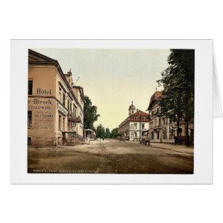 Weisser Hirsch, Saxony, Germany rare Photochrom Card