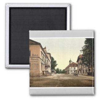 Weisser Hirsch, Saxony, Germany rare Photochrom Magnet