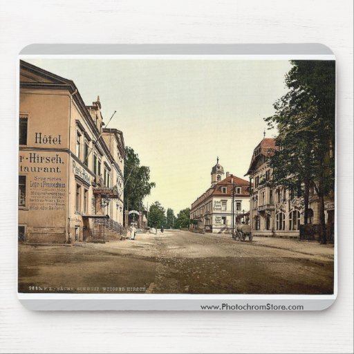 Weisser Hirsch, Saxony, Germany rare Photochrom Mouse Pad