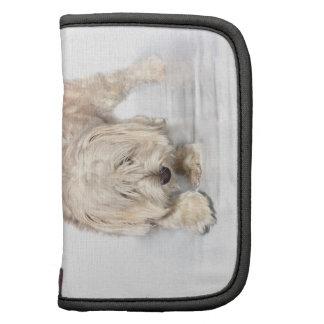 Weisser Hund Folio Mini Mappen