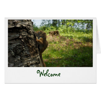 Welcome Squirrel Greeting Card