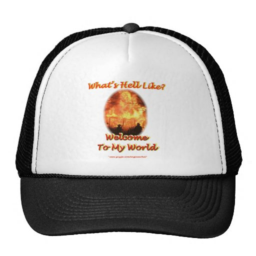 Welcome to my World Mesh Hats