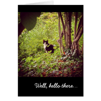 """Well, hello there..."" Cat Greeting Card"