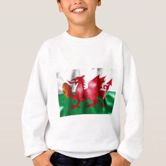Welsh Dragon Rugby Ball Flag Sweatshirt