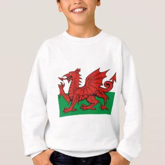 Welsh flag, wear it with pride sweatshirt