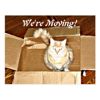 """""""We're Moving"""" Announcement Postcard"""