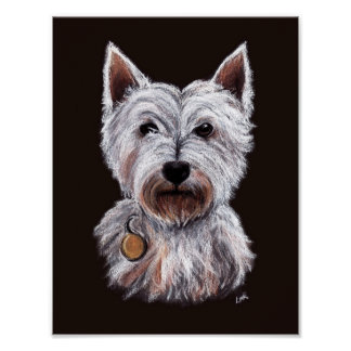 West Highland Terrier Dog Pastel Illustration Poster