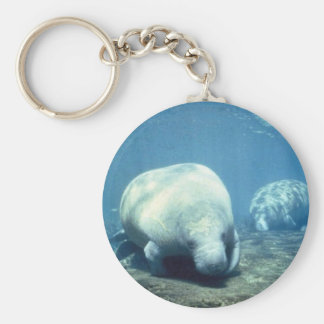 West Indian manatee Key Ring