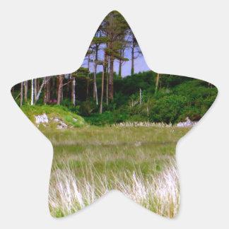 """""""West of Ireland Landscape"""" Star Sticker"""