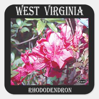West Virginia Rhododendron Maximum Square Sticker
