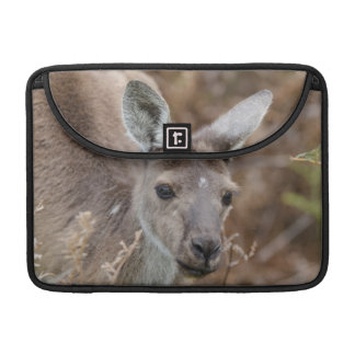 Western Australia, Perth, Yanchep National Park Sleeve For MacBooks