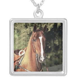 Western Tennessee Walking Horse Silver Plated Necklace