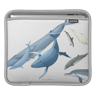 Whales iPad Sleeve