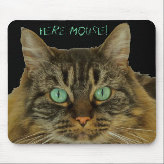 What Could be Cooler than a Cute Cat MousePad