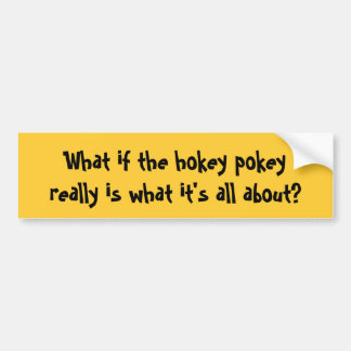 What if the hokey pokeyreally is what it's all ... bumper sticker