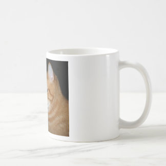 """What Part of """"Meow"""" Don't You Understand Basic White Mug"""