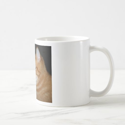 "What Part of ""Meow"" Don't You Understand Mugs"