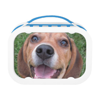 What's for Lunch? Beagle Pup Lunch Box