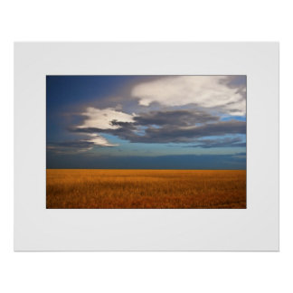 Wheat Field Fine Oil Painting Posters