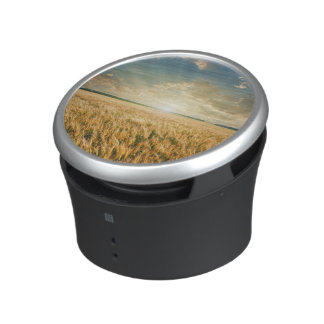 Wheat field on sunset speaker