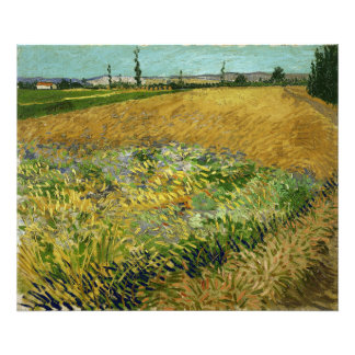 Wheatfield by Vincent Van Gogh Photographic Print