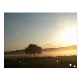 When The Fog Rolls In Postcard