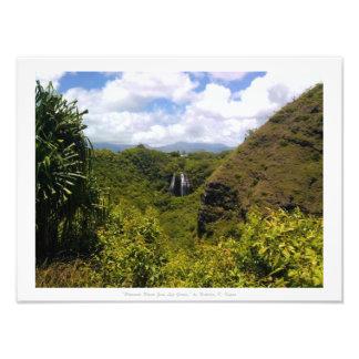 """""""Wherever Water Goes Life Grows,"""" Kauai Photo"""