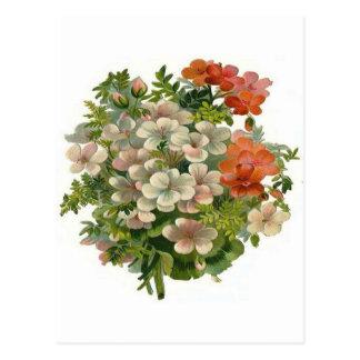 White and Orange Flowers Postcard