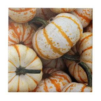White and Orange Mini Pumpkins Small Square Tile