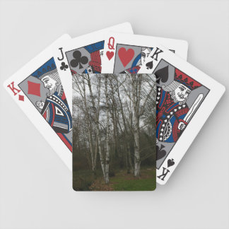 White Bark Trees Playing Cards