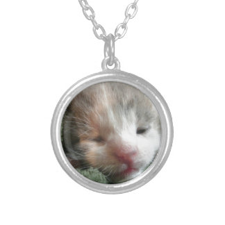 White Calico Kitten Silver Plated Necklace