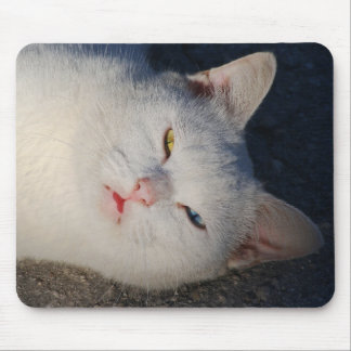 White cat with blue eye and green eye mousepads