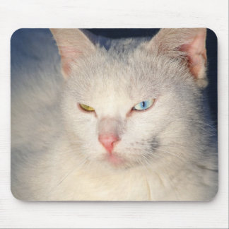 White cat with blue eye and green eye mousepad