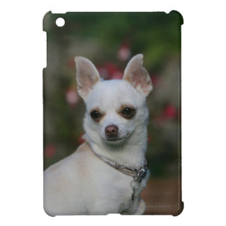 White Chihuahua Case For The iPad Mini