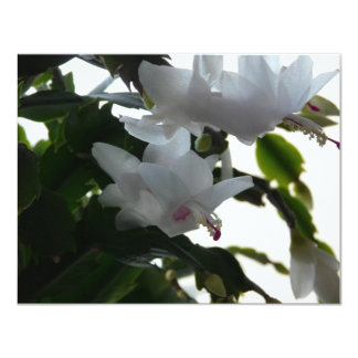 white christmas cactus 4.25x5.5 paper invitation card