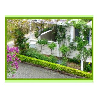 White Cottage in Botanic Gardens New Zealand Postcard