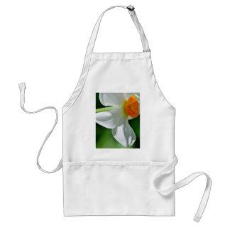 White Daffodil, Vermont Standard Apron