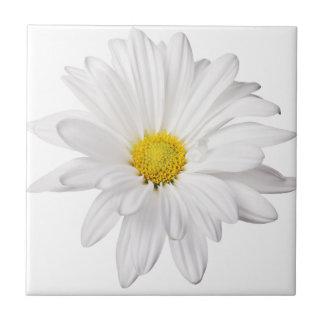 White Daisy Flower Background Customized Daisies Tile
