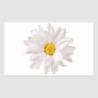 White Daisy Flower Design Floral Daisies Template Rectangular Sticker