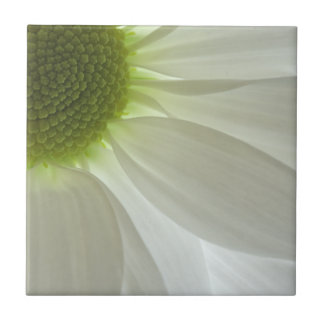 White Daisy Petals Tile